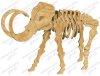 Скелет Мамонта (ш620в430г190)